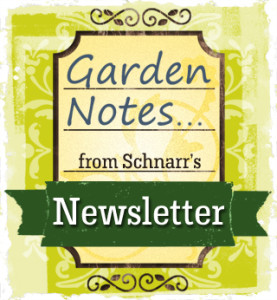 Garden Notes from Schnarr's Newsletter