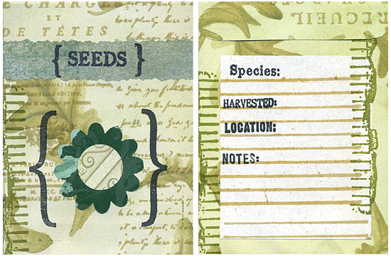 Decorated homemade seed packet'